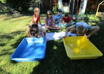 So genießen die Kichererbsen den Sommer